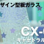 CX-00:キャセドラルクリア 【商品紹介】