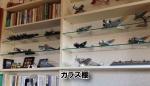 ディスプレイの棚をガラスでお作りになられたお客様(兵庫県神戸市T様)