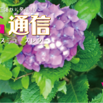 KG通信vol.16 WEB公開しました!!