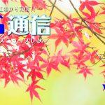 KG通信vol.19 WEB公開しました!!