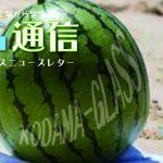 KG通信vol.18 WEB公開しました!!