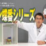 【DIYシリーズ!】ステン硝子蝶番シリーズを使ってガラス扉を設置する方法